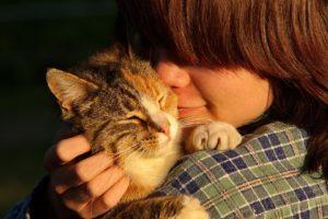 Person cuddling their kitten