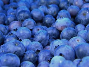 A bunch of blueberries