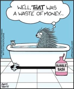 Cartoon of a Porcupine in a bubble bath